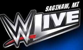 WWE Live banner